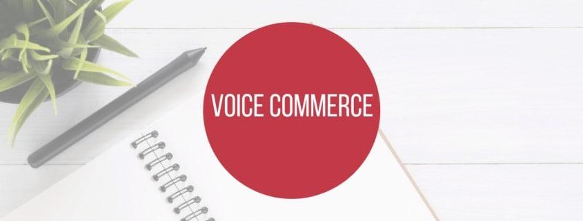 Voice Commerce - Lexikonbeitragsbild