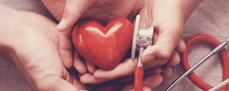 Hände, die ein Herz festhalten, Stethoskop
