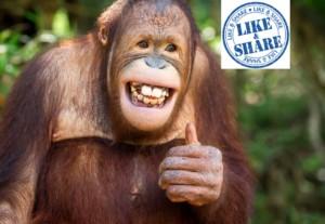 facebook likes, Facebook Likes abgeschafft!