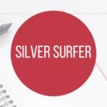 Herobild Silver Surfer