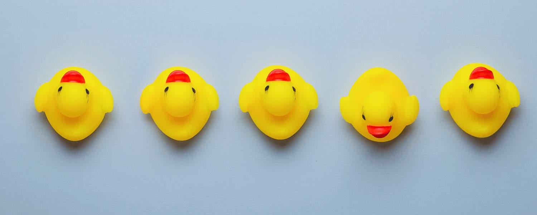 Duplicate Content, Duplicate Content – aufspüren, bewerten und beseitigen