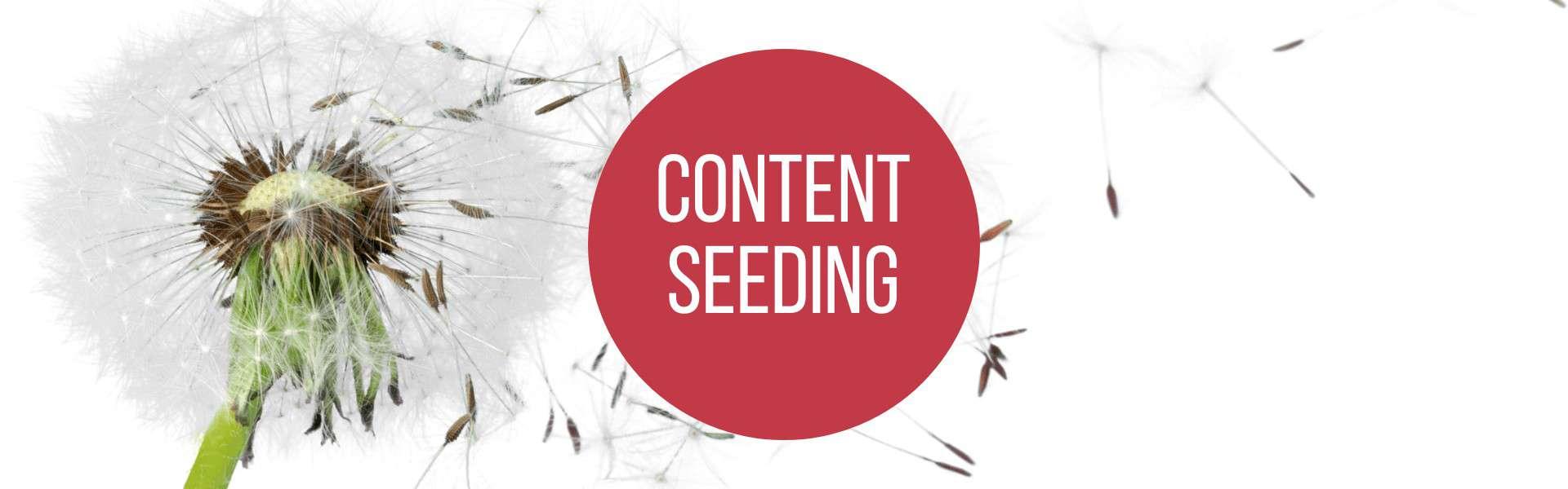 Content Seeding, Content Seeding – so wird's gemacht!